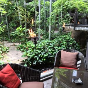 待ち合いから素敵な竹林が見えます。 538002さんのTHE KAWABUN NAGOYA(ザ・カワブン・ナゴヤ)の写真(818343)