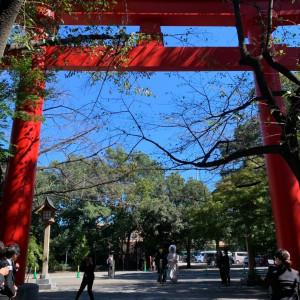 大鳥居|548885さんの冠稲荷神社 宮の森迎賓館 ティアラグリーンパレスの写真(905941)