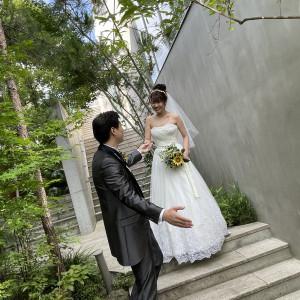 敷地内には緑が溢れていていました。|588865さんのIWAI OMOTESANDO(イワイ オモテサンドウ)の写真(1228092)
